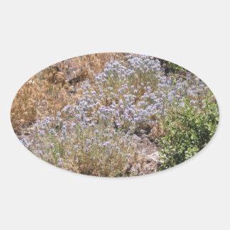 紫色の砂漠Wildlower 楕円形シール