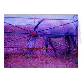 紫色の私有地の馬 グリーティングカード