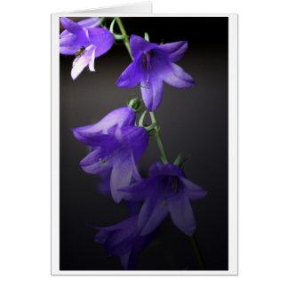 紫色の美女 ノートカード