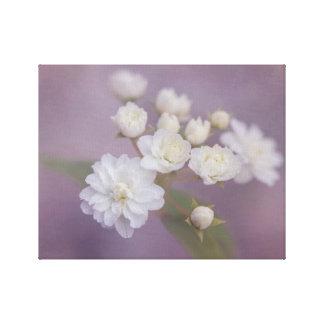 紫色の背景が付いている敏感な白い花 キャンバスプリント