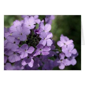 紫色の花カード カード