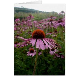 紫色の花分野 の郵便料金 グリーティングカード