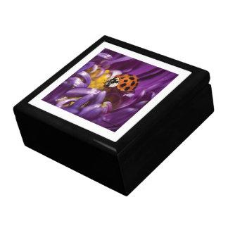 紫色の花及びBug女性ギフト用の箱 ギフトボックス