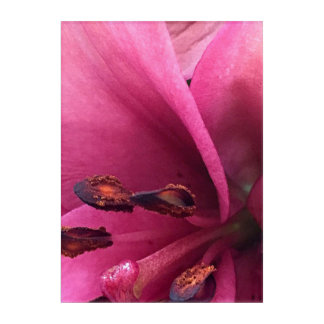 紫色の花粉 アクリルウォールアート