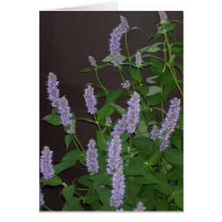 紫色の花 カード