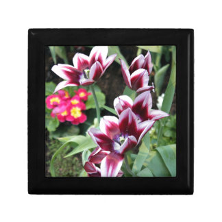 紫色の花 ギフトボックス