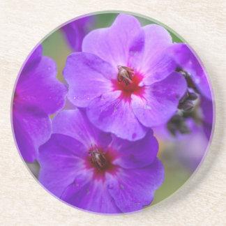 紫色の花 コースター