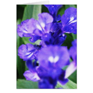 紫色の花 ノートカード