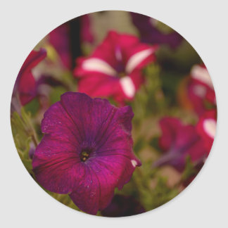 紫色の花 ラウンドシール