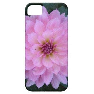 紫色の花 iPhone 5 Case-Mate ケース