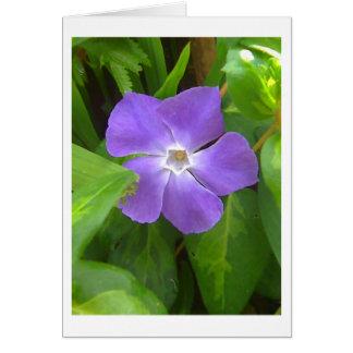 紫色の花Notecards ノートカード
