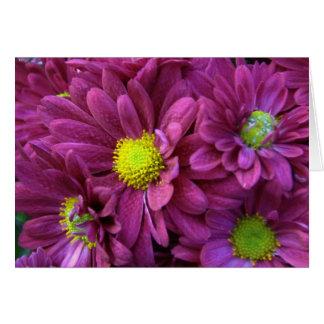 紫色の菊 ノートカード