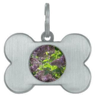 紫色の薄紫 ペットネームタグ