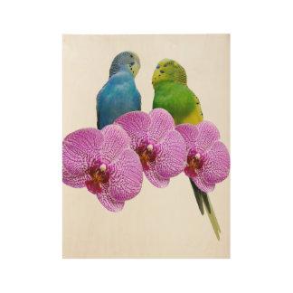 紫色の蘭とのBudgie ウッドポスター