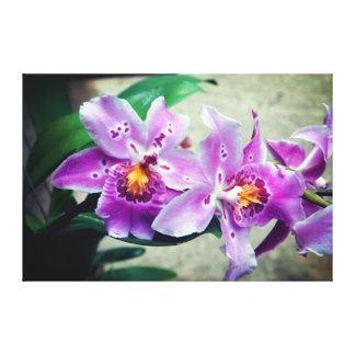紫色の蘭のキャンバスプリントのプリント キャンバスプリント