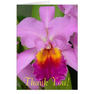 紫色の蘭 ノートカード