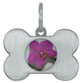 紫色の蘭 ペットネームタグ