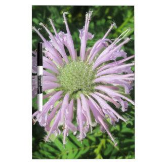 紫色の蜂のやし ホワイトボード