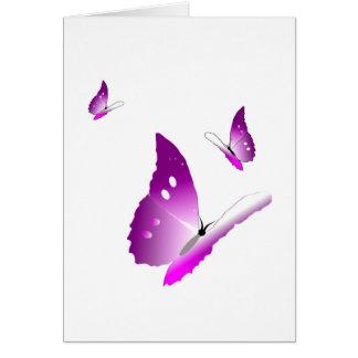 紫色の蝶 カード