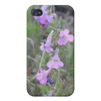 紫色の野生の花4/4s iPhone 4/4Sケース
