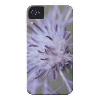 紫色の野生ボタン Case-Mate iPhone 4 ケース