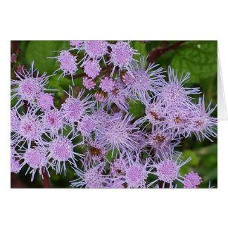 紫色の開花 ノートカード
