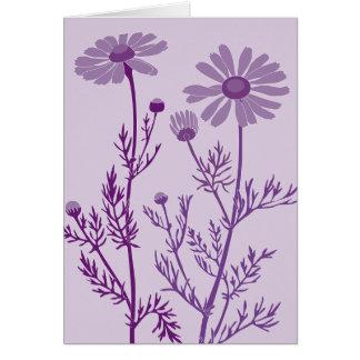 紫色のcamomile カード