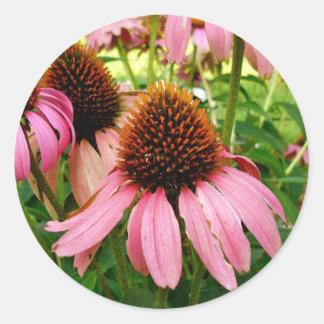 紫色のconeflowerのステッカー ラウンドシール