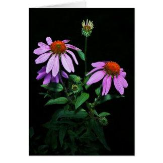 紫色のConeflower カード
