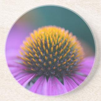 紫色のconeflower (Echinaceaのpurpurea) コースター