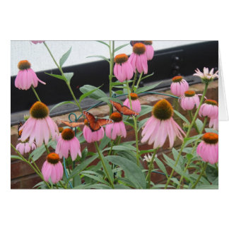 紫色のconeflowersの蝶 カード