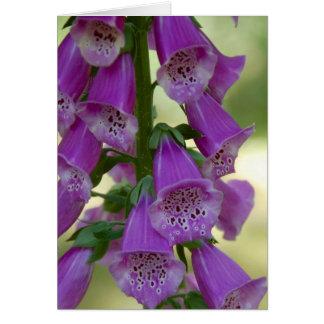 紫色のFoxglove Notecard ノートカード