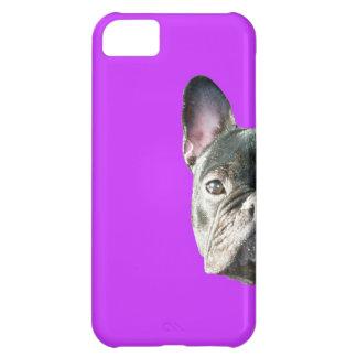 」紫色のIphone 5の場合をかいま見ているフレンチ・ブルドッグ「 iPhone5Cケース