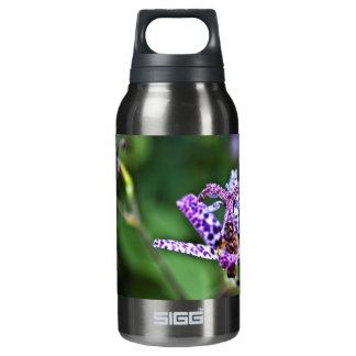 紫色のTricyrtisのヒキガエルユリの花 断熱ウォーターボトル