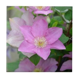 紫色クレマチスの花の花 タイル