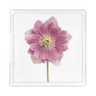 紫色ユリの花のアクリルの皿 アクリルトレー