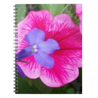 紫色及びピンクのノート(80ページB&W) ノートブック