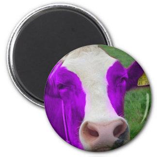 紫色牛 マグネット