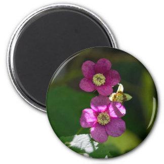 紫色花盛りのラズベリーのピンクの野生の花の磁石 マグネット