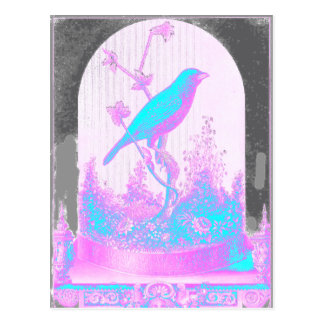 紫色青緑の鳥、淡いピンク黒 ポストカード