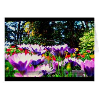 紫色! ノートカード