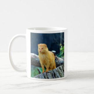 細いマングースGalerella Sanguinea コーヒーマグカップ