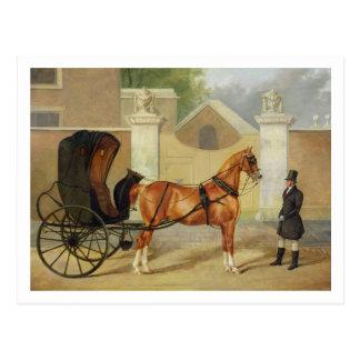 紳士のキャリッジ: カブリオレ、c.1820-30 (油 ポストカード