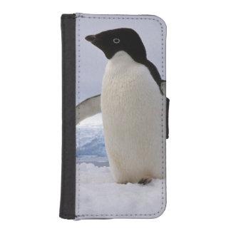 組のアデリーペンギン南極大陸 iPhoneSE/5/5sウォレットケース