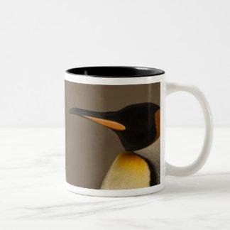 組のキングペンギン(コウテイペンギン属p. ツートーンマグカップ