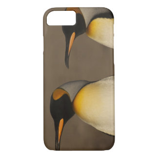 組のキングペンギン(コウテイペンギン属p. iPhone 8/7ケース