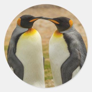 組のキングペンギン、フォークランド ラウンドシール
