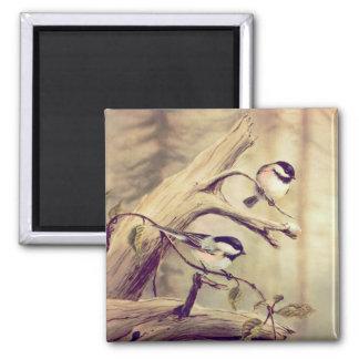 組のシャロンSHARPE著《鳥》アメリカゴガラ マグネット