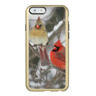 組の北の(鳥)ショウジョウコウカンチョウ INCIPIO FEATHER SHINE iPhone 6ケース