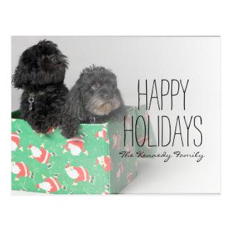 組の愛らしい子犬 ポストカード